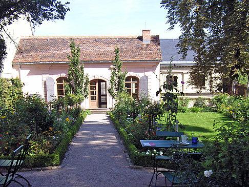 Garten vom Kirms Krackow Haus Foto , Übersicht aller Weimar-Bilder
